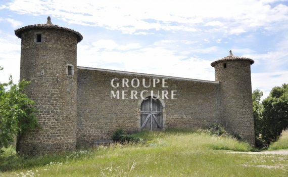 Derelict Castle in Chanas France for sale