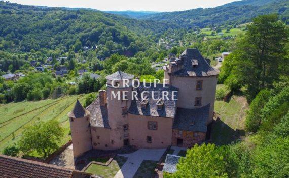 Estaing France Renovated Castle for sale