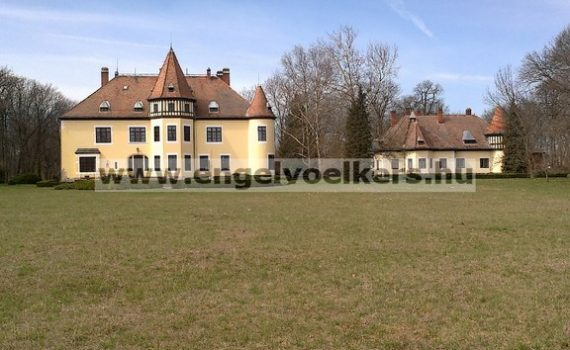 Hungarian Neo Gothic Castle for sale