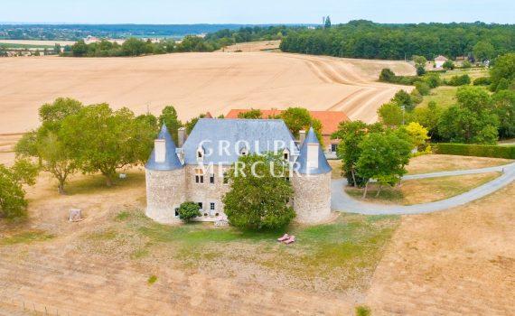 Limagne France Castle for sale