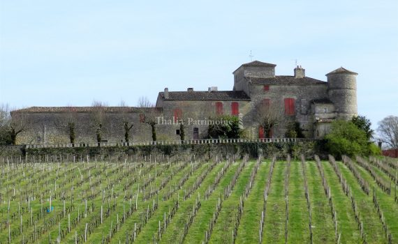 Magnificent Castle near Bordeaux France for sale