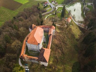 Mirna Castle for sale