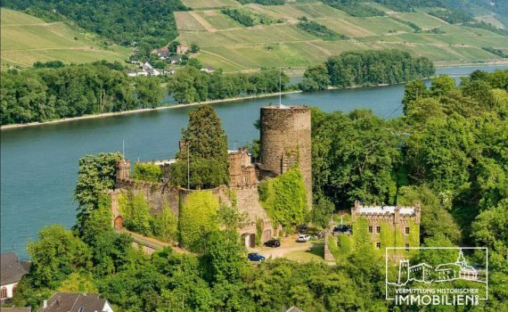 Romantic Castle for sale on the Rhine Germany