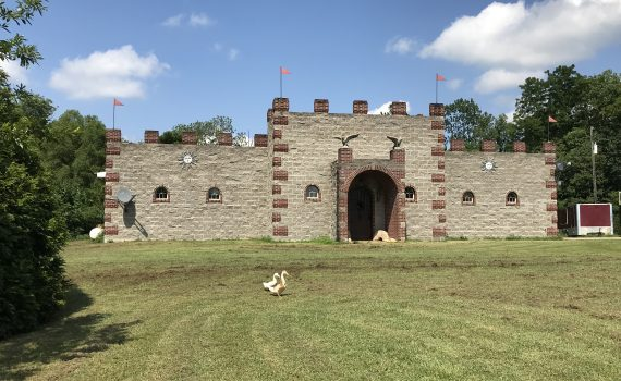 Safford Alabama Castle For Sale