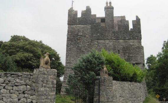 Strongford Castle for sale Ireland